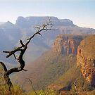 Blyde River Canyon by Alberto  DeJesus