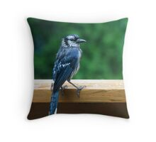 Blue Jay during a summer rain Throw Pillow
