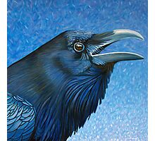 A Ravens Prayer Photographic Print