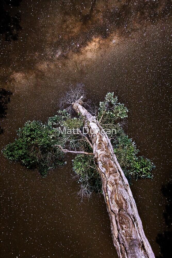 Star Gazing by Matt Duncan