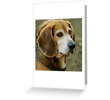 Leader Of The Pack Greeting Card