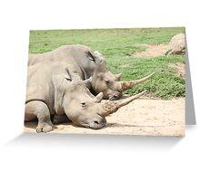 Rhino's Greeting Card