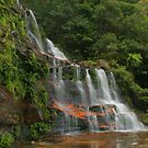 Katoomba Falls .. with green & orange by Michael Matthews