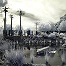 Alien Garden 2 - Walking the Garden of eDen by lightsmith