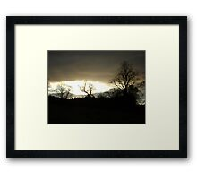 Eye of Trees (sunset, Falkland) Framed Print