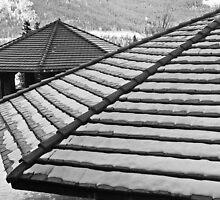 Rooftops by Ryan Davison Crisp