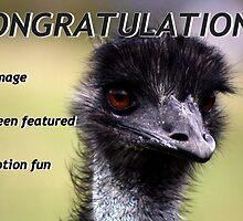 Old Man Emu by myraj