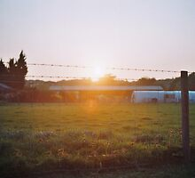 Sun passing through the fence by Emma Schroeder