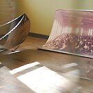 Old Canoe by Danielle  La Valle