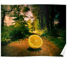 Lemon Entry Poster