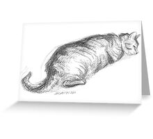Tinkerbell Sleeping - Pencil Sketch Greeting Card
