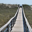 Bridge over the Dune - Salvo NC by Robin Lee