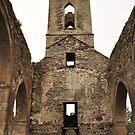 Baltinglass abbey inside view. by Finbarr Reilly