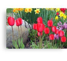 Springtime Garden Canvas Print