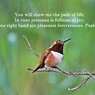 In Your Presence Psalm 16:11 by hummingbirds