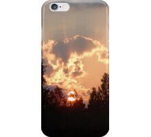 Backyard Sunset iPhone Case/Skin