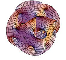 Calabi-Yau Manifold by Stewart Dickson