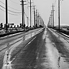 Wet Country Road by Buckwhite