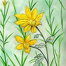 Coffee Cups and Friends Coreopsis Flower by Anne Gitto