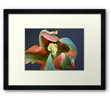 Tulip with an artistic mind Framed Print
