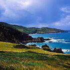 Devon coast on a sunny day by Michael Schmid