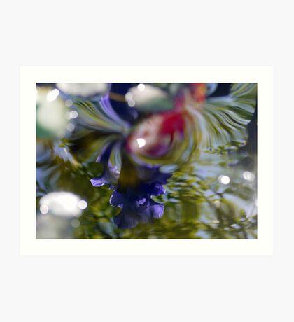 The reflection of Blue Iris Art Print