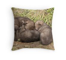 The Official Debut!!!!! Throw Pillow