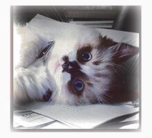 Ragdoll Kitten  Kids Tee