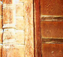 The Door by Lenore Senior