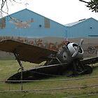 Sopwith Camel Crash? by muz2142