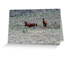 Free Rein Greeting Card