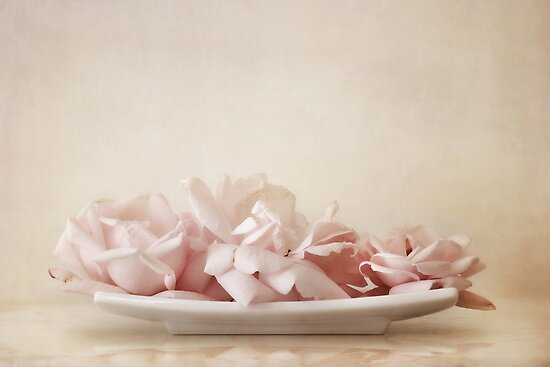 roses by Priska Wettstein
