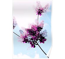 Floral Lace Poster