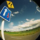 Road Signs by Steven Carpinter