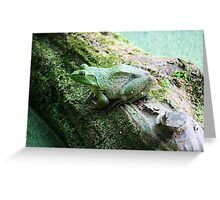 Frog on a Log Greeting Card