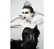 Black Swan II Photographic Print