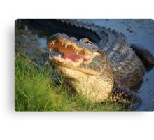 Dem Gators gots a Mouth Full of Big Teefers Canvas Print