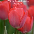 Where flowers bloom by wishgirl