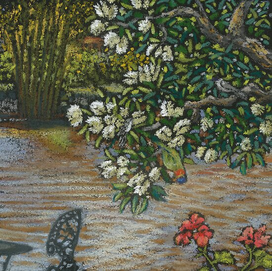 paperbarks in bloom- miniature pastel by maria paterson