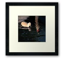 What.. difference! Framed Print