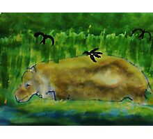Hippo in the water,( revised), watercolor Photographic Print