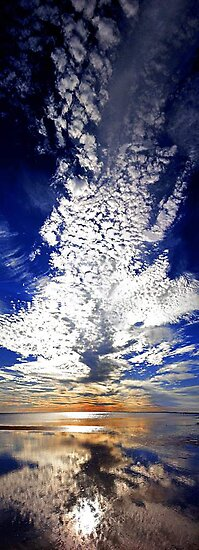 Morning Reflection - Shark Bay Western Australia  by EOS20