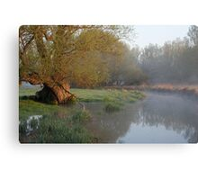 - Willow Tree Canvas Print