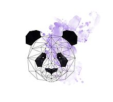 Purple Poly Panda Photographic Print