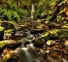 Hopetoun Falls 2 - Otways Victoria by Graeme Buckland