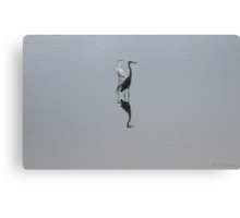 Reflections of Fishers Canvas Print