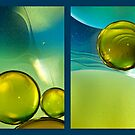 Bubbles Diptych by Mandy Brown