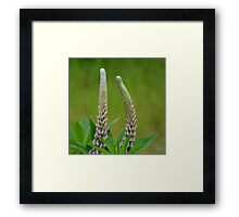 Only With You Framed Print