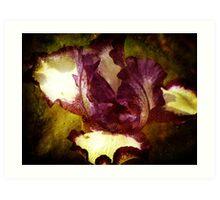 A Manipulated Iris Art Print