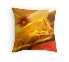 Light That Paints Throw Pillow